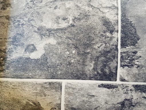פיויסי לריצוף 1070 tarkett-avizemel-floor