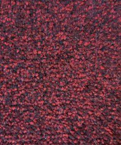 שטיח שעיר 22