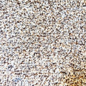שטיח שעיר 90