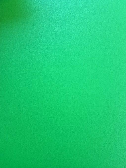 פי וי סי ירוק tarkett
